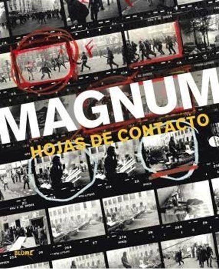Imagen de MAGNUN. HOJAS DE CONTAGIO
