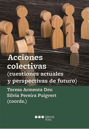 Imagen de ACCIONES COLECTIVAS