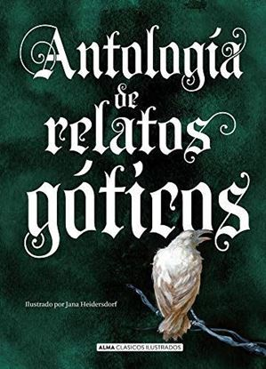 Imagen de ANTOLOGIA RELATOS GOTICOS (CLASICOS ALMA