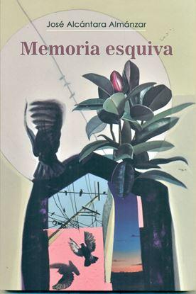 Imagen de MEMORIA ESQUIVA