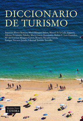 Imagen de DICCIONARIO DE TURISMO