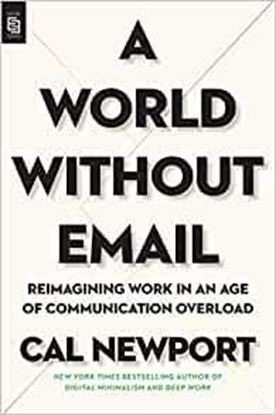 Imagen de A WORLD WITHOUT EMAIL