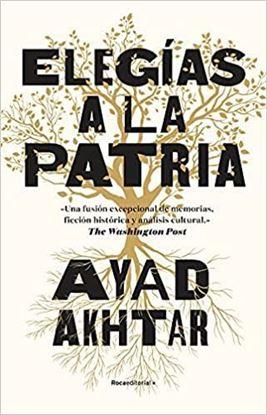 Imagen de ELEGIAS A LA PATRIA